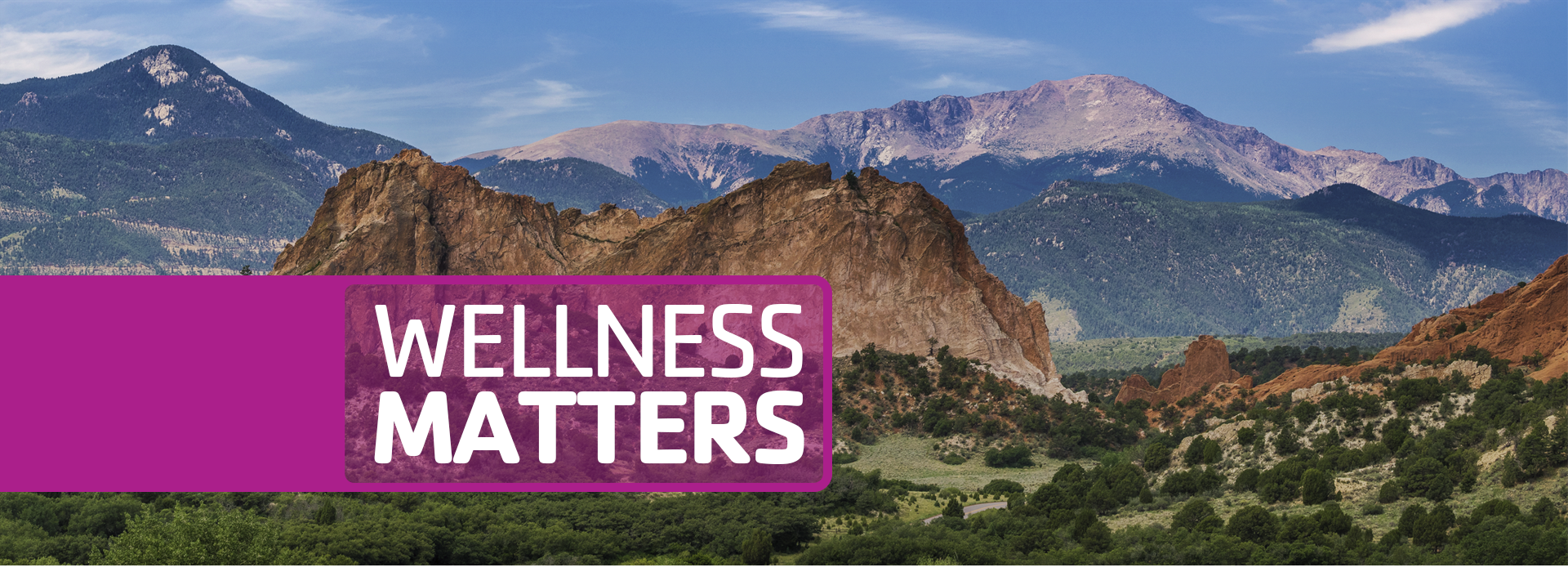 2020_YMCA_WellnessMatters_HS